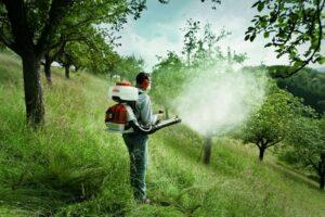 Стимуляция и защита деревьев